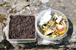 Résultat du compostage avec la matière première qui a été mélangée aux déchets de jardin.