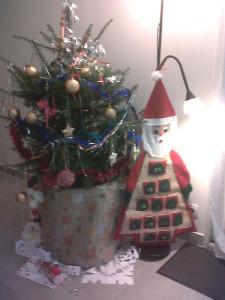 Sapin de Noël à louer